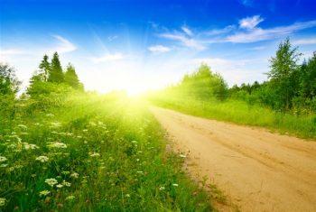 Какая дорога ведет к счастью?